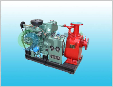 CWY pump, diesel engine emergency pump
