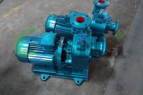 CBZ marine pump