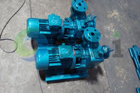 CBZ self-priming pump
