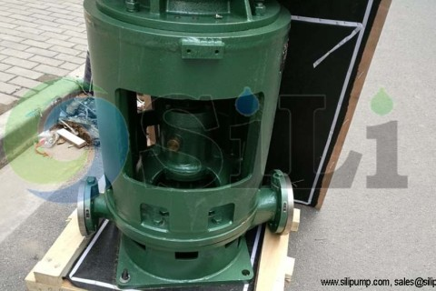 CLH closed coupling pump